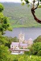 Travel small groups, spontaneous stops, private tours, hidden places, Ireland's best small groups tours